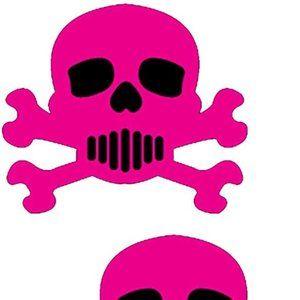 Hot Pink Skull & Crossbones Nipple Pasties